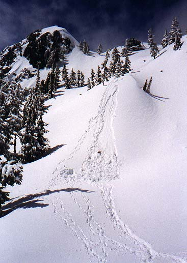 Avalanche path